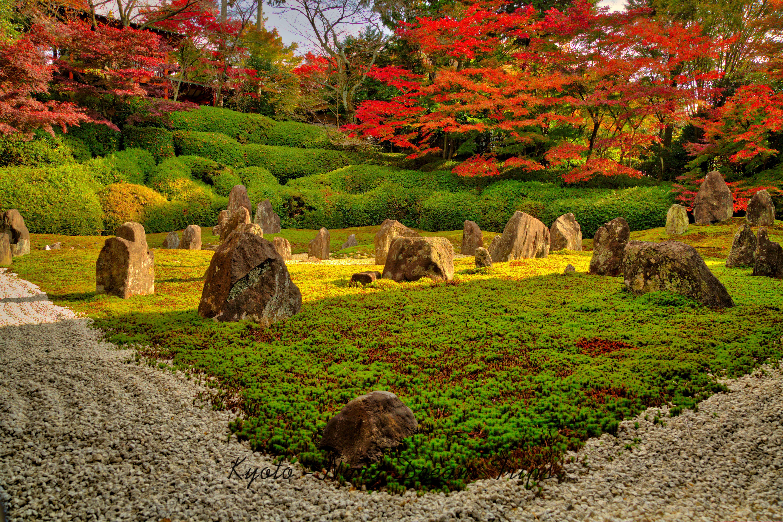 K My In, A Zen Garden In The Heart Of