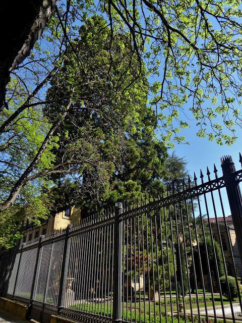 Adoquines y Losetas Jardines de Palacio Parques y Jardines