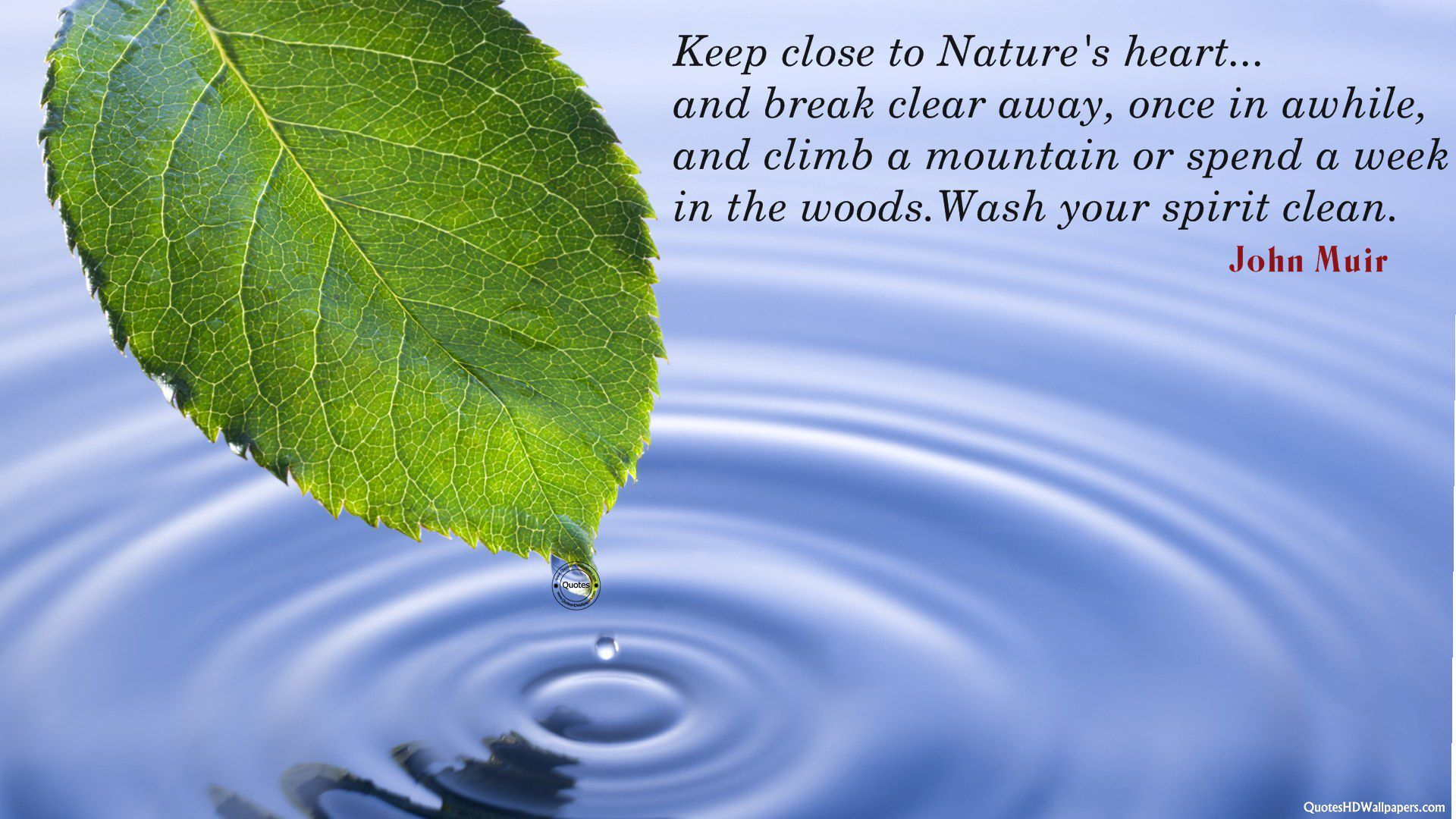 Nature Greenery Quotes Background 1 HD Wallpapers