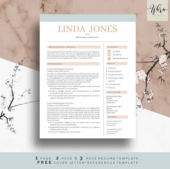 Resume Templates Cv Template Resume Format Resume Professional