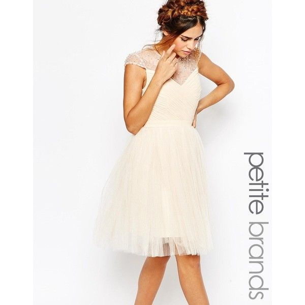Little Mistress Petite Tulle Prom Dress With Embellished Sheer ...