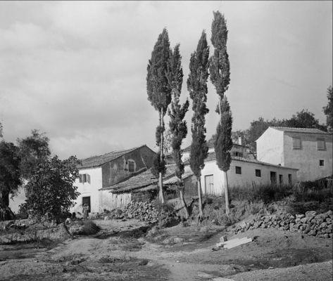 4ca907f3506 Δείτε το χωριό Κουραμάδες της Κέρκυρας, αρχές 20ου αιώνα, μέσα από ...
