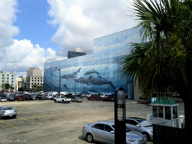My Life in the Quarter: Riverwalk Parking Lot   New Orleans Sites and Sights