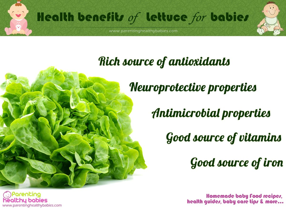 Health Benefits Of Lettuce For Babies Baby Food Recipes Homemade Baby Foods Lettuce Benefits