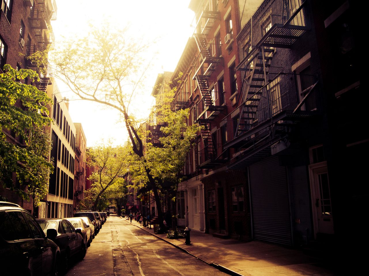 New York City - Greenwich Village: Take a walk down a tree-lined street at sunset as the sun illuminates the fire escapes and buildings.