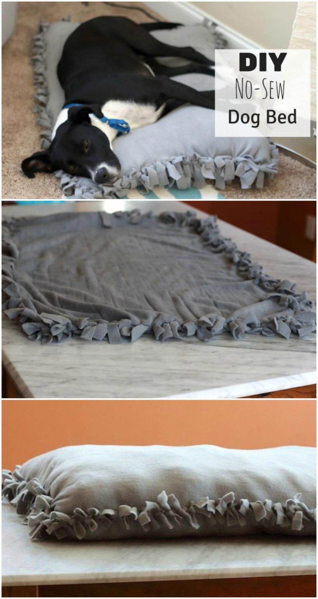 Diy No Sew Dog Bed For Under 10 Make Your Own Pet