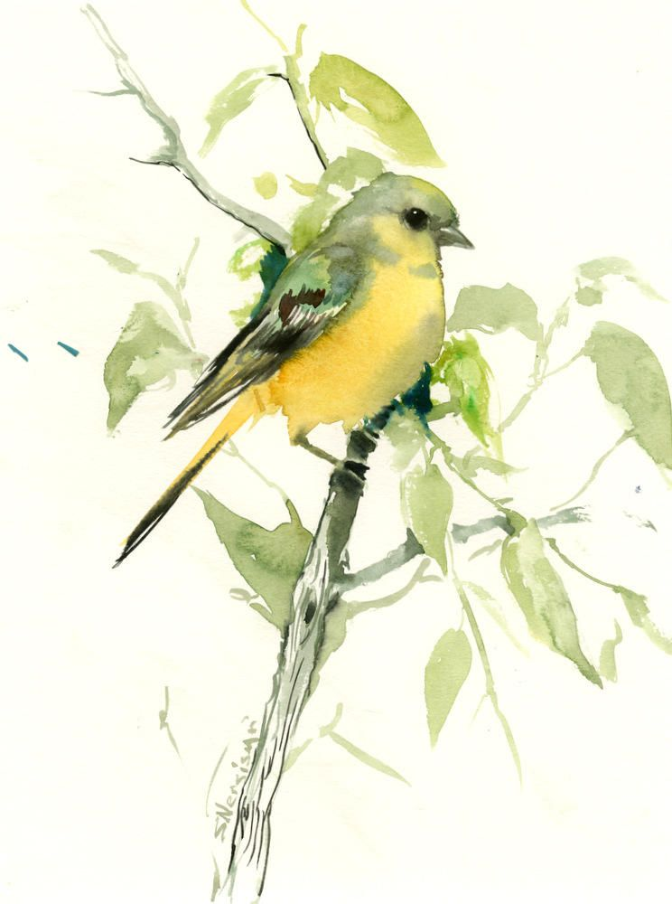 Bird Artwork American Goldfinch Female Original Watercolor Art