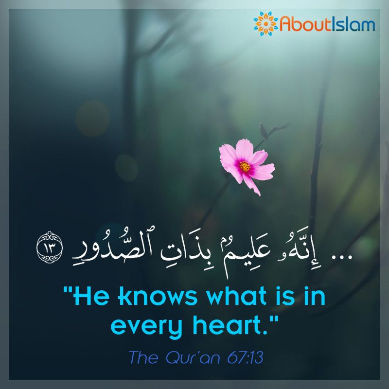 O Allah We Pray That You Purify Our Hearts You Know All Things That Are In There Ameen Quran Verses Quran Quotes Holy Quran