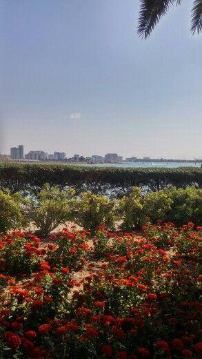 At al mamzar park .. Alot of beautiful views