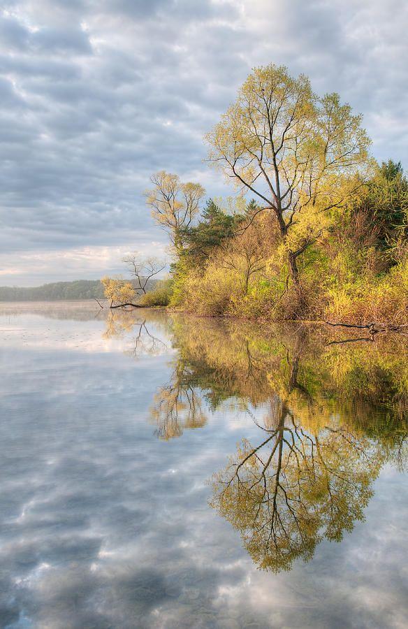 ✯ Spring shoreline of Whitford Lake - Fort Custer State Park, Michigan