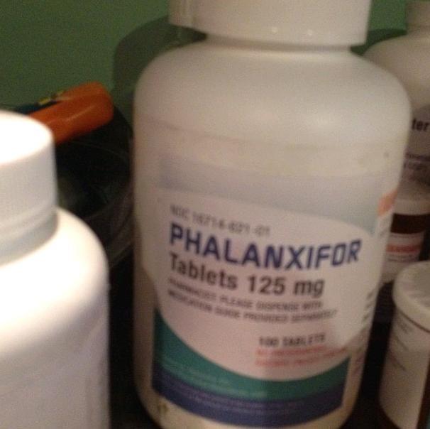 Philanxiphor, save Hazel