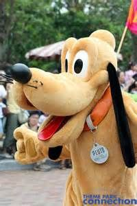 Details About Disney Park Character Pluto Costume Dog Tag If Found Disney Friends