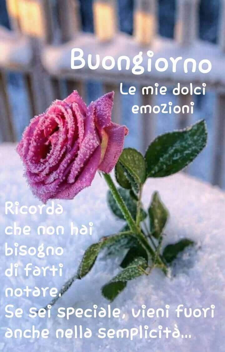 Pin von Rosalba Mancini auf Buongiorno | Pinterest