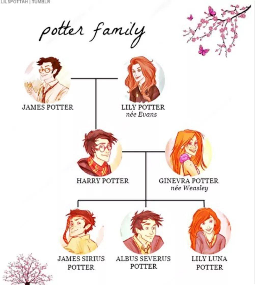 The Potters Harrypotter Harry Potter Anime Harry Potter Family Tree Harry Potter Drawings