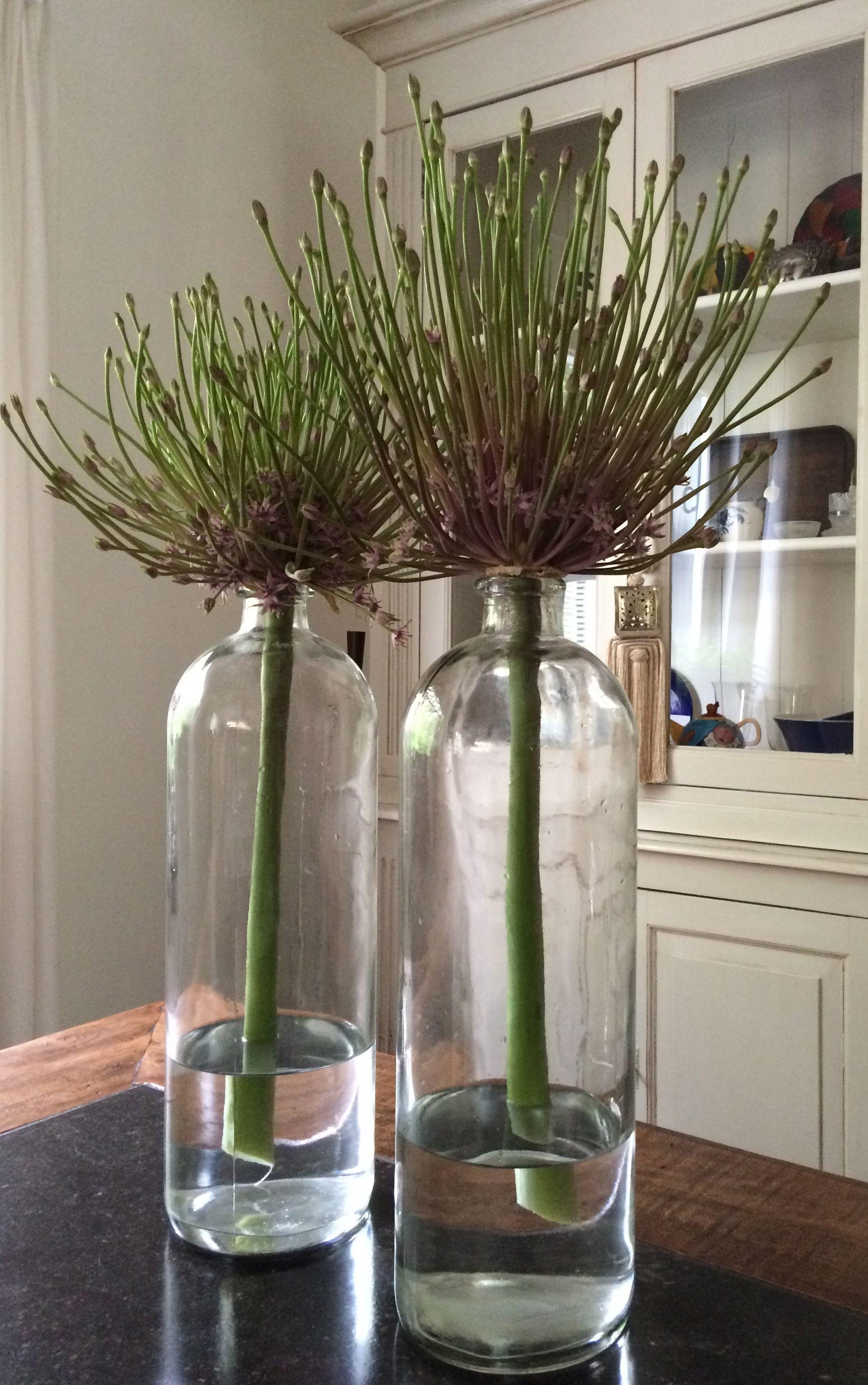 #dekorative #der #Einfachheit #Glasflaschen #schön #we