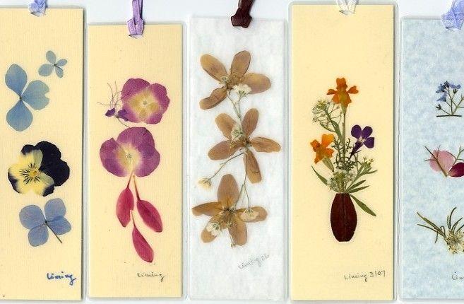 Открытки из сухих цветов