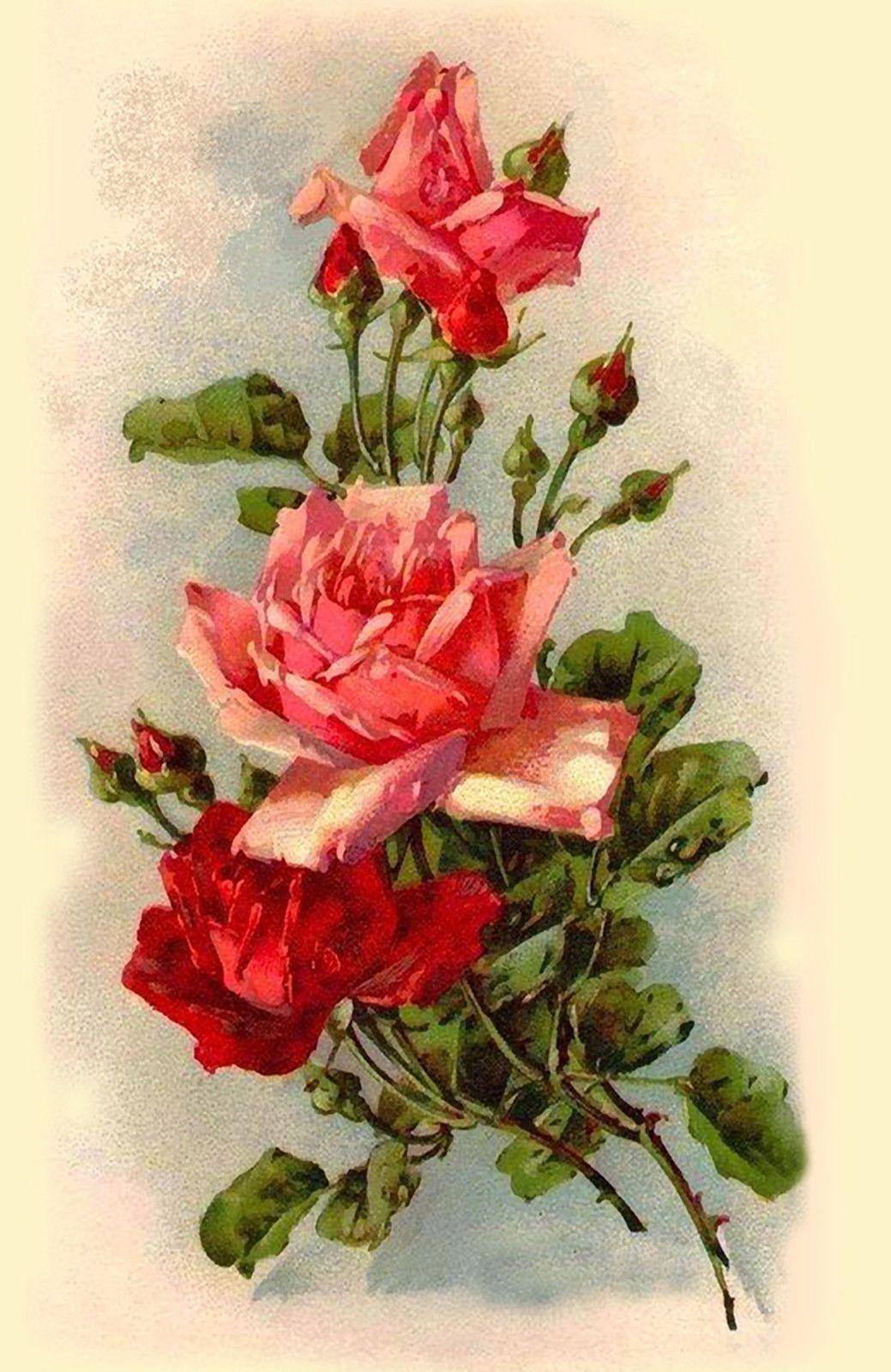 блоки советские картинки с розами это очень