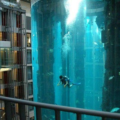 World's Largest Cylindrical Aquarium