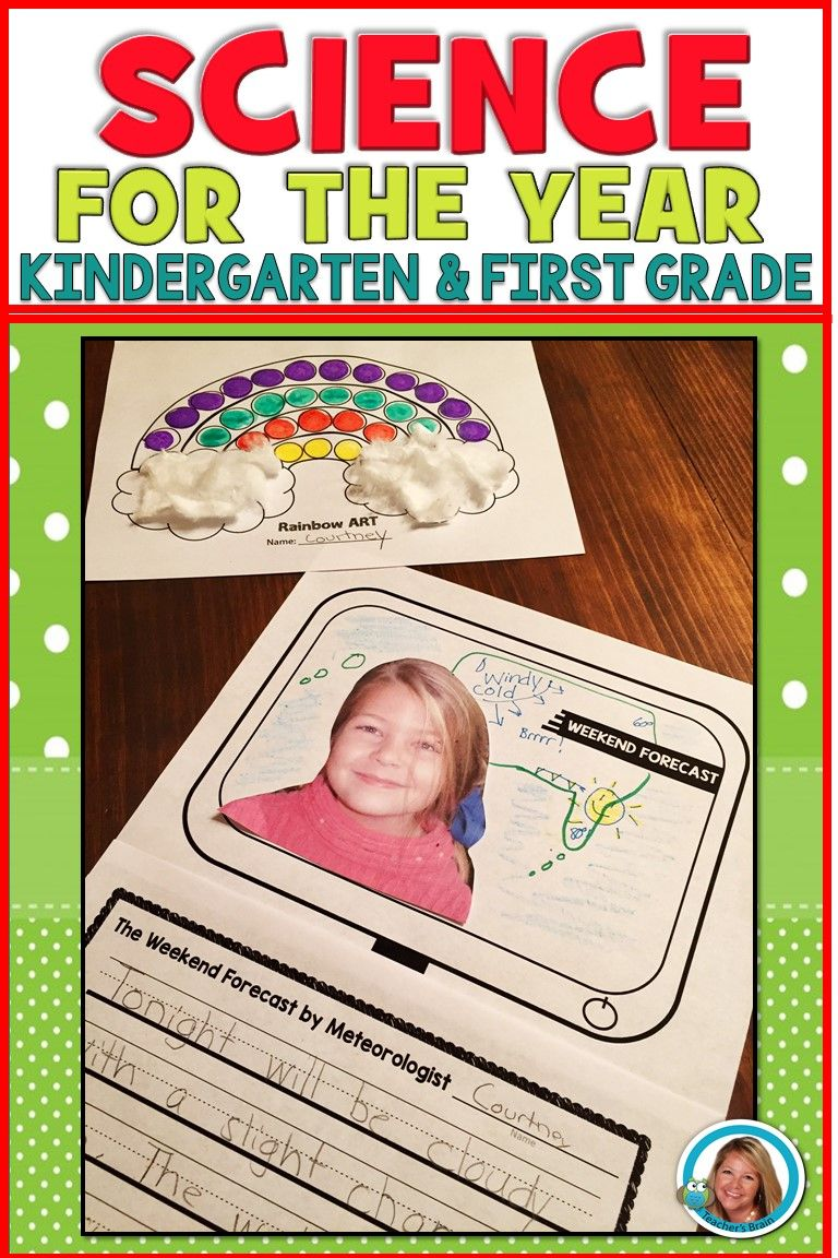 Science BUNDLE kindergarten and 1st Grade First Grade