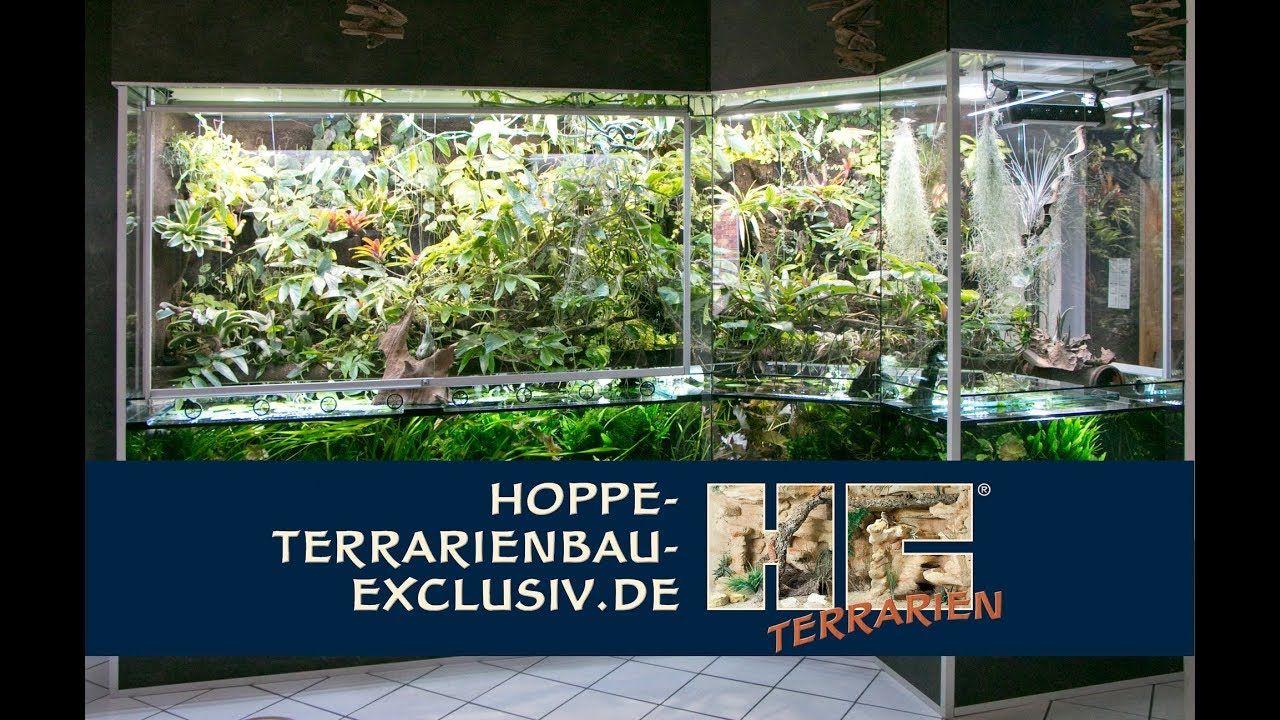 Bau Eines Fast 5 Qm Grossen Aqua Terrariums Fur Fische Mit Regenwaldlands Terrarium Felslandschaft Aqua