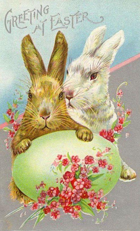Буквой, смешные открытки с пасхой на немецком