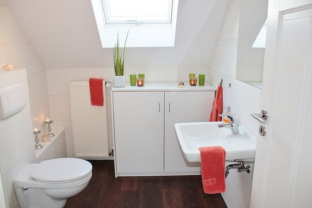 How To Make Yourself Throw Up With Images Small Bathroom Small Bathroom Remodel Bathrooms Remodel