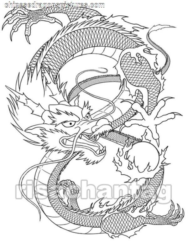 Dragon Head Outline | Awesome Dragon Pictures