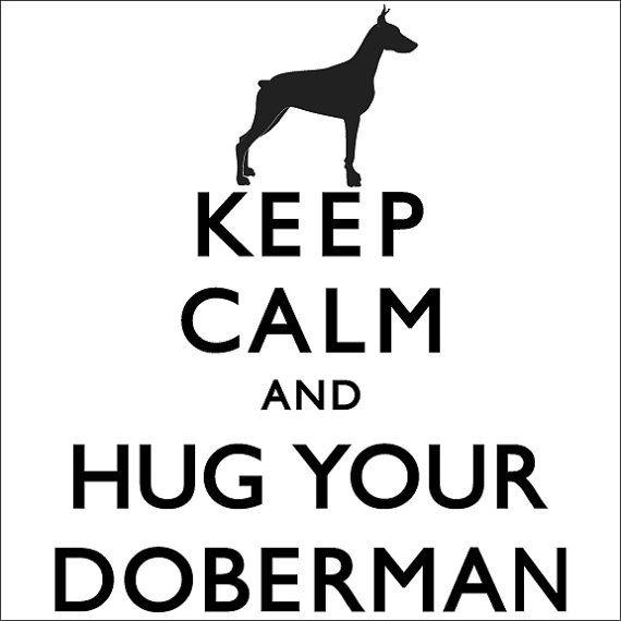 Keep Calm And Hug Your Doberman Ladies Tshirt by TheDogEmpire, $24.00