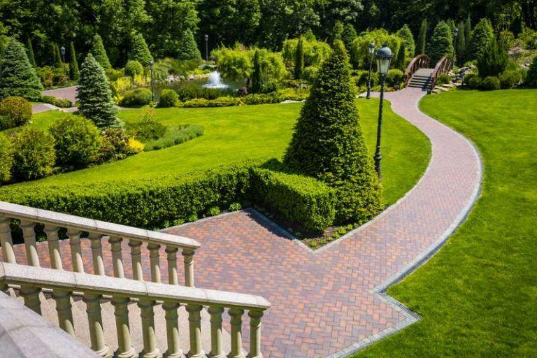 lawn garden toms lawns garden - Toms Lawn And Garden