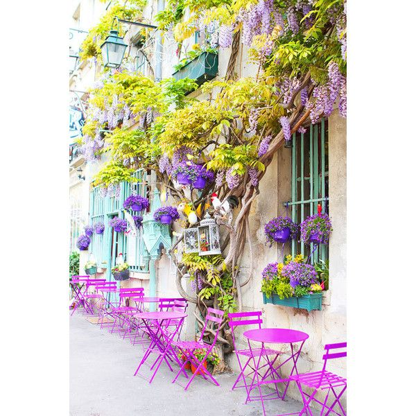 Hidden Paris Photography Walking Tour. Site has GPS locations for... ❤ liked on Polyvore featuring backgrounds, pictures, floral, flowers and paris