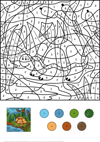 Turtle In Pond Color By Number Coloring Page From Color By Number Worksheets Category Select Coloring Pages Free Printable Coloring Pages Fall Coloring Pages