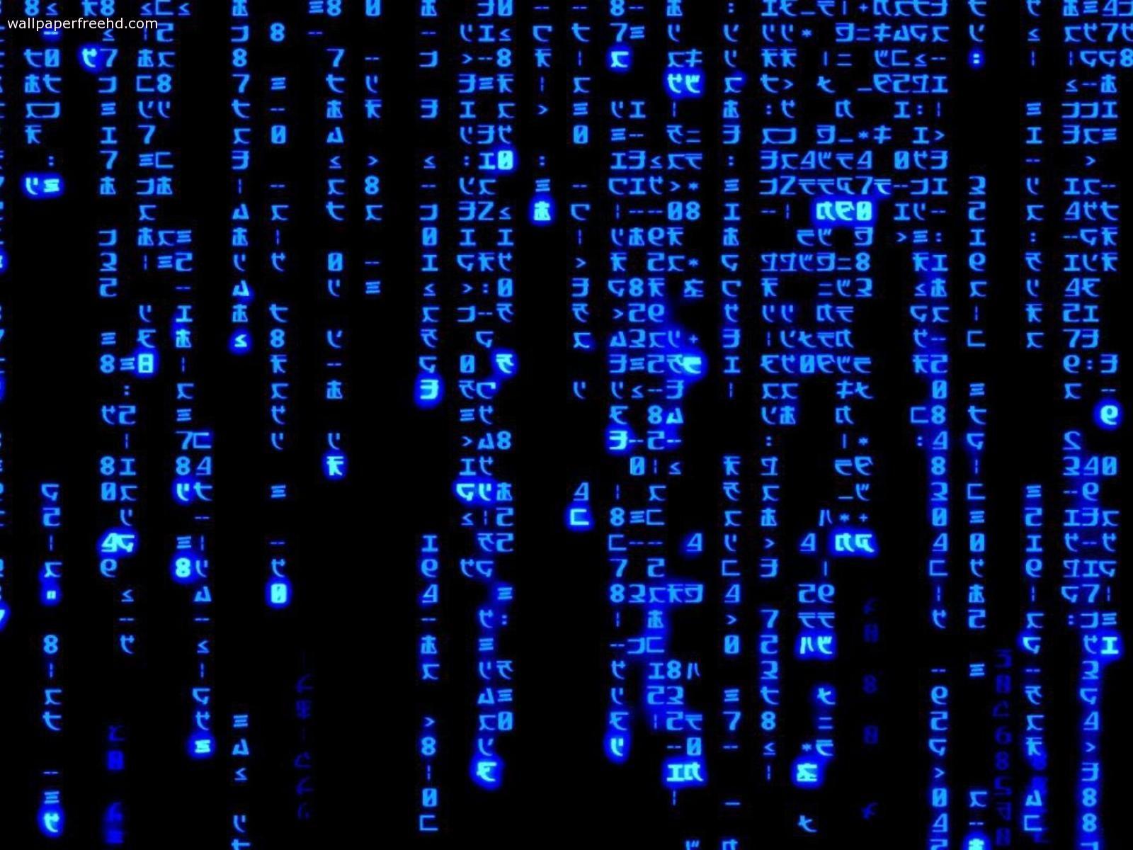 The Matrix Animated Graphics Animate It 1920 1080 Matrix Gif Wallpapers 20 Wallpapers Adorabl Digital Wallpaper Code Wallpaper Black Background Wallpaper