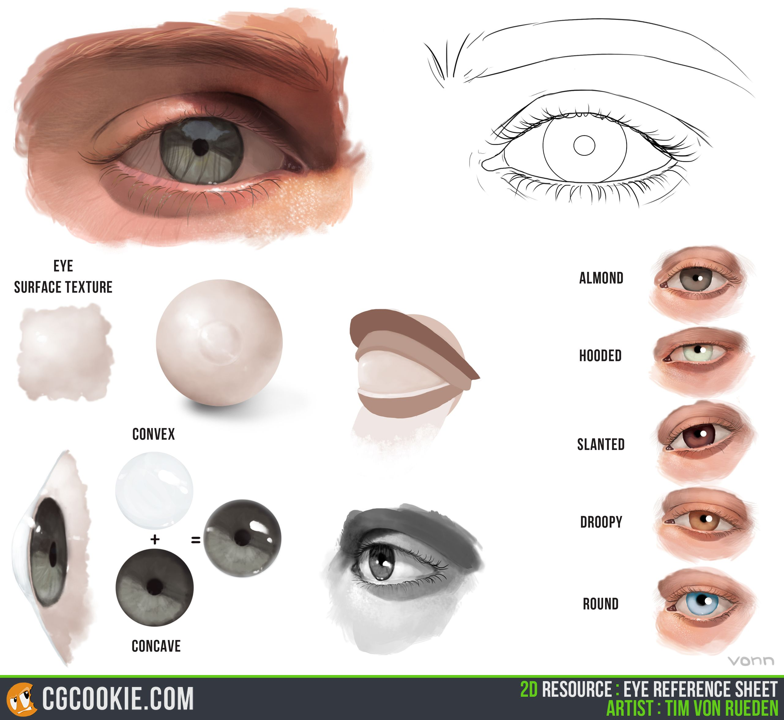 The Eye Reference « CGCookie | Drawing and painting | Pinterest ...
