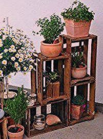 Photo of ᐅ Holzkisten kaufen | Weinkisten & Obstkisten – Dekokisten