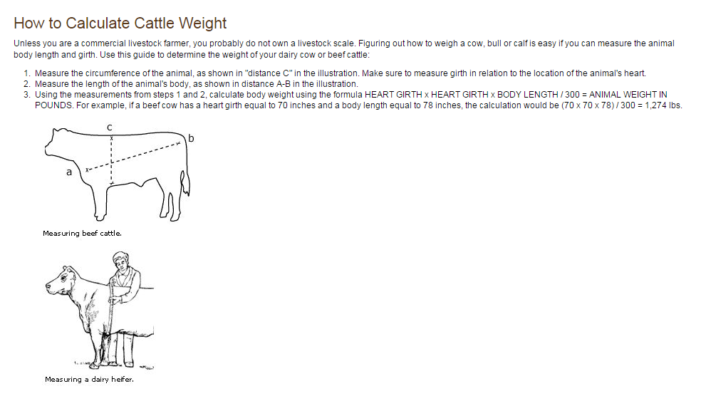 How to Calculate Cattle Weight | Family Cow | Cattle, Cow