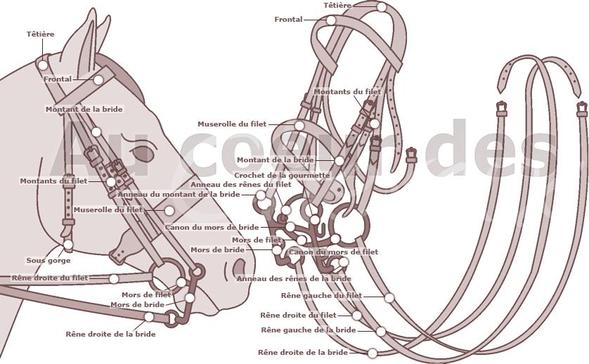 Anglais filet articulé poney Bridon-toutes tailles-bits n brides