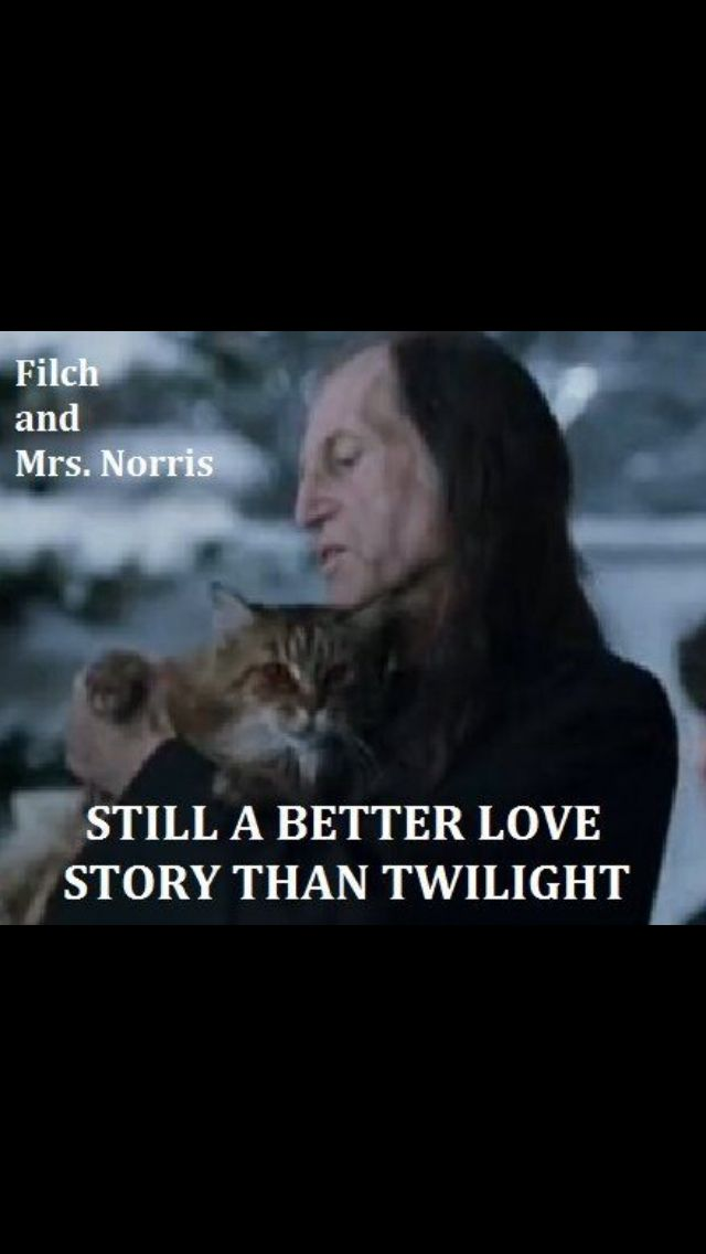 Everything Is A Better Story Than Twilight With Images Harry