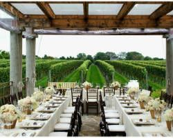 Vineyard wedding vineyard wedding pinterest vineyard wedding wolffer estate vineyard on long islands east end is a gorgeous location for a wedding or just an afternoon of wine tasting little blue dish junglespirit Image collections