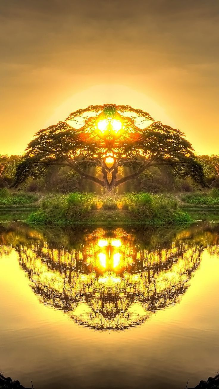 Double reflection in Paradise - #double #Paradise #reflection