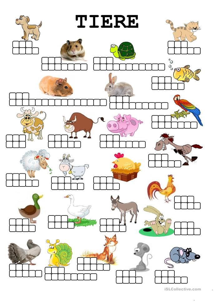 TIERE in 2018 | Niemiecki | Pinterest | Worksheets