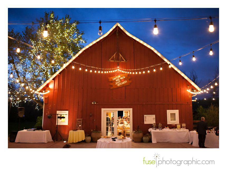8b057ace032cbf230a8ab378dd2d36e1 - Denver Botanic Gardens Christmas Lights Chatfield