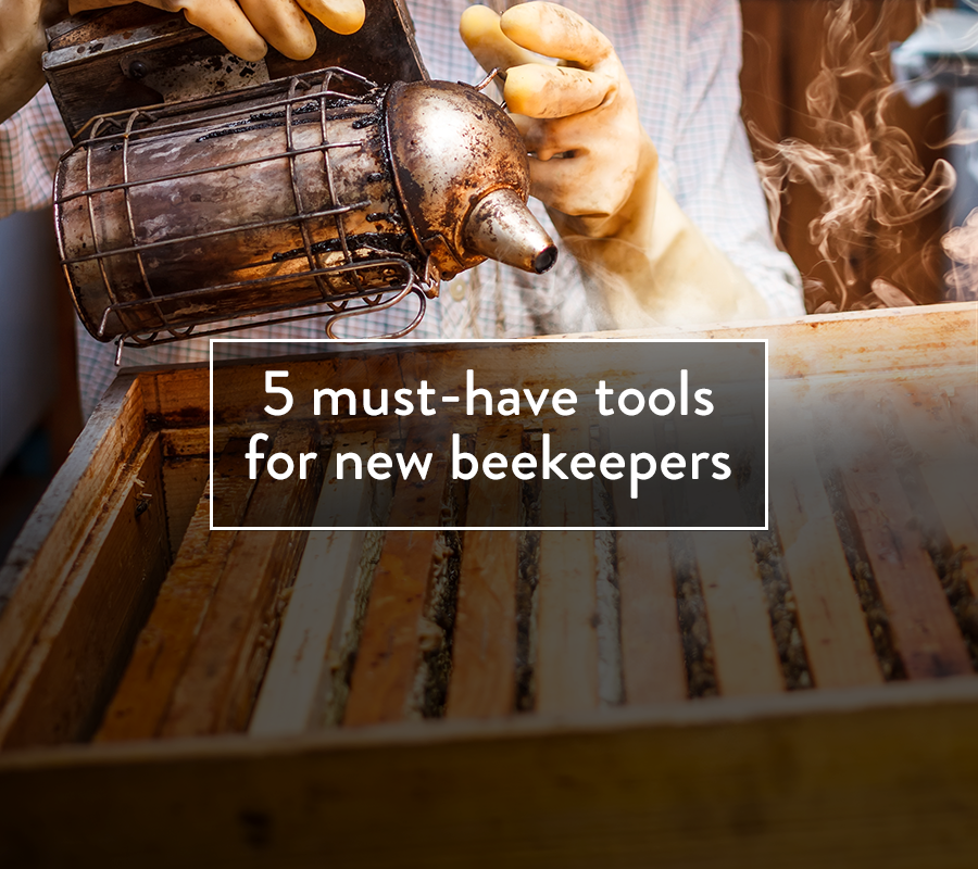 Decided to start keeping bees? Congratulations! Don't forget this list of essential tools you'll want to own to help you be successful.