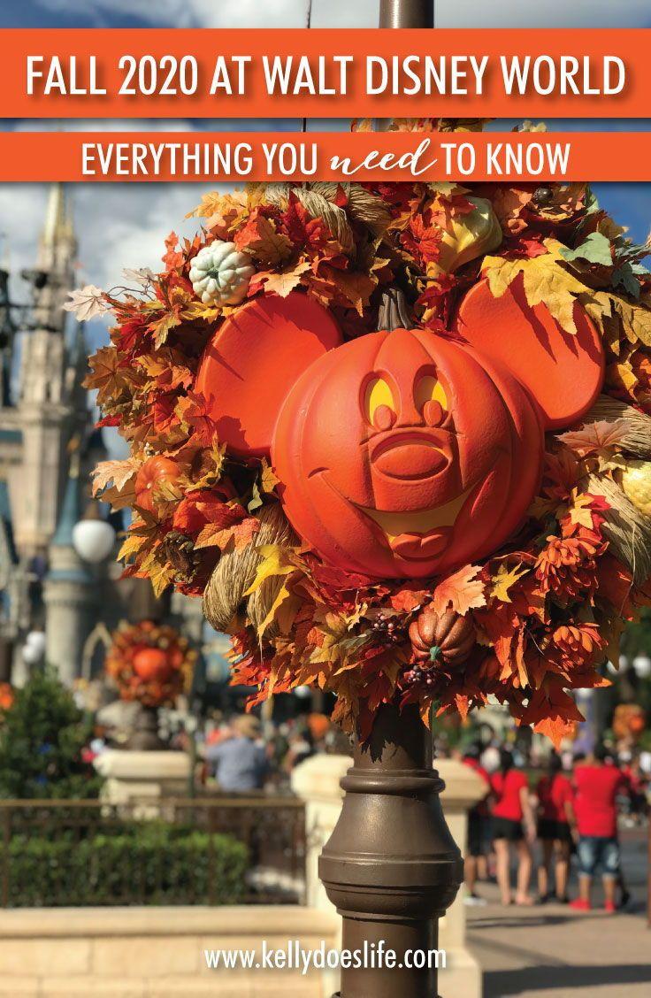 Pin On Disney World Disneyland And Universal Studios