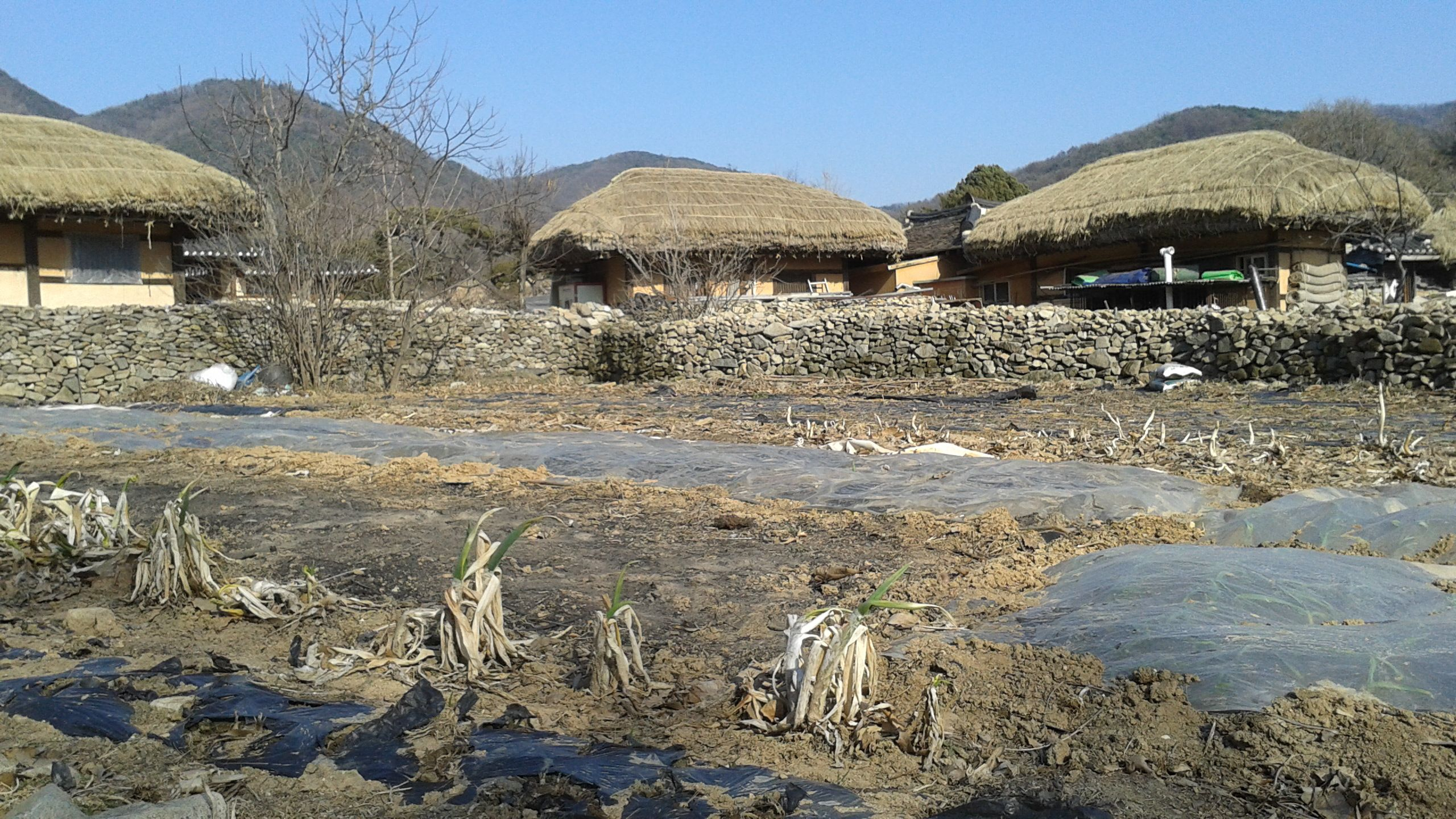 OEAM FOLK VILLAGE (아산 외암민속마을) http://natispiritedventure.weebly.com/blog/oeam-folk-village