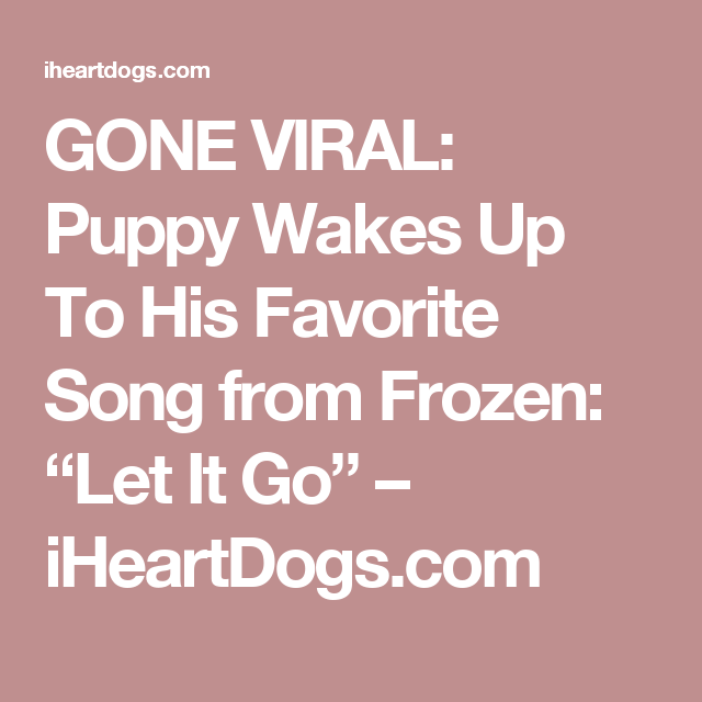 """GONE VIRAL: Puppy Wakes Up To His Favorite Song from Frozen: """"Let It Go"""" – iHeartDogs.com"""
