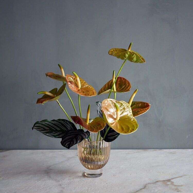 Portland Floral Studio On Instagram Maybe Your Love Doesn T Want Something In 2020 Ikebana Flower Arrangement Anthurium Arrangement Contemporary Flower Arrangements
