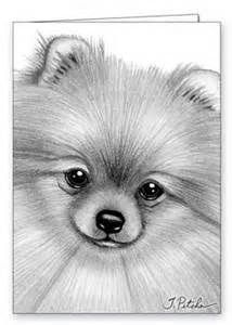 Pomeranian Coloring Pages Bing Images Animal Drawings Dog Art