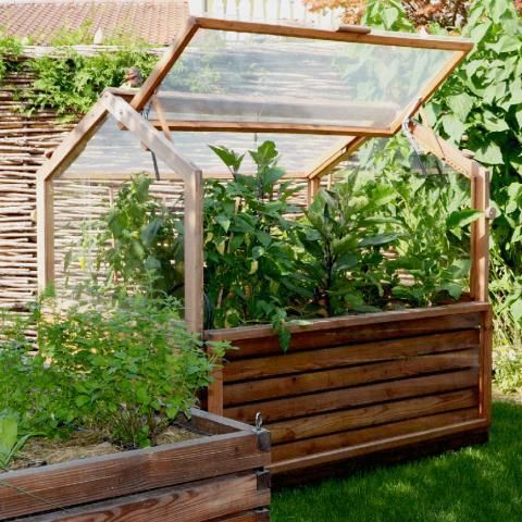 Photo of Build and plant raised beds: how it works – [LIVING AT HOME] …