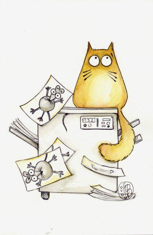 Нарисованные коты картинки приколы, шляпка