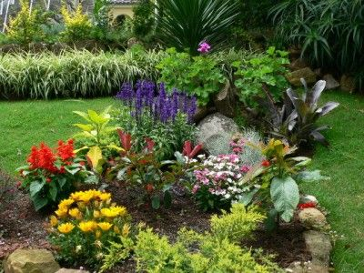 fotos de flores para jardines | Home Sweet Home!! | Pinterest ...